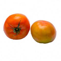 Tomate Pera 1 Kg.