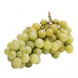 Uva Blanca sin Grano