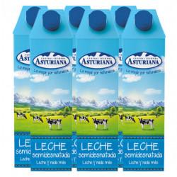 Central Lechera Asturiana Leche Semidesnatada (Pack 6x1L)