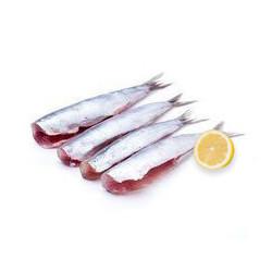 Sardinas Abiertas sin Cabeza ni Tripa 500gr (6-8 sardinas)