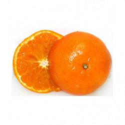 Mandarina Variedad Orri Extra