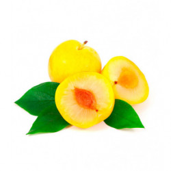 Pruna Amarilla