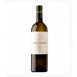 Vino Blanco José Pariente 75cl DO Rueda