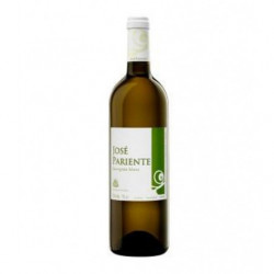 Vino Blanco José Pariente Sauvignon Blanco 75cl DO Rueda