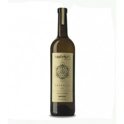 Vino Blanco Còsmic Valentia de Còsmic Vinyaters 75cl DO Empordà
