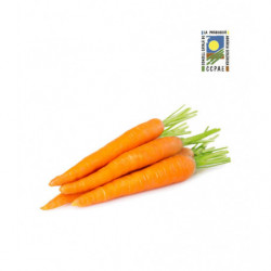 Zanahoria granel Ecológica