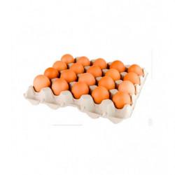 Huevos Gourmet Clase L