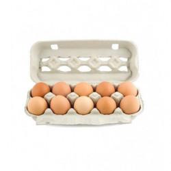 Huevos Gourmet S