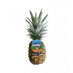 Piña Frunet