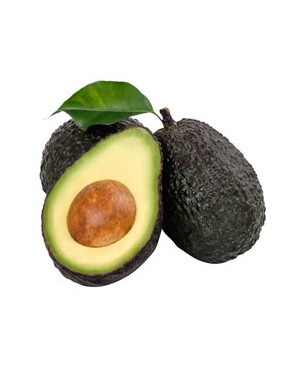 Aguacate Hass Cal 16 Tipo Tropas