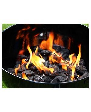 Carbón Con Astillas Grill Eco 12 L.