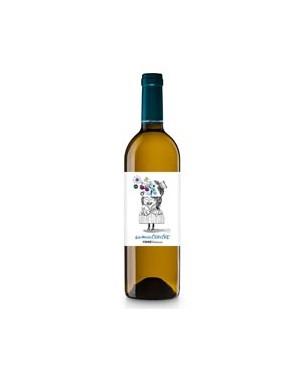 Vino Blanco Somiatruites Ferre I Catasús Sauvignon 75cl D.O. Penedés