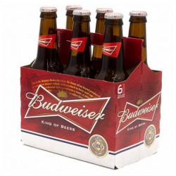 Cerveza Budweiser (Pack 6 x 25cl) 5%